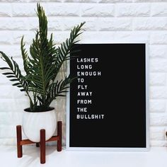 Lash room inspiration ✨ - furniture world Eyelash Studio, Eyelash Salon, Facial Room, Beauty Room Salon, Lash Lounge, Esthetics Room, Eyelash Technician, Lash Quotes, Lash Room