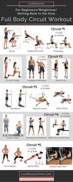Full Body Workout_For Beginners Full Body Circuit Workout, Full Body Workouts, Weight Training Workouts, Fitness Workouts, Gym Circuit Workouts, Weight Training For Beginners, Full Body Weight Workout, Gym Workouts Plan For Women, Fitness Circuit