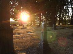 sun in graveyard