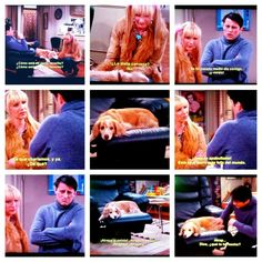 #joey #phoebe    #dogy #sad #broke #thehistoryofmylife