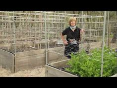 Tricia shows you how to build a variety of quick and easy vegetable trellises. Garden vertically this year, trellis tomatoes, cucumbers, melons, beans, and peas.