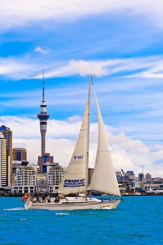 """The """"Pride of Auckland"""" sailboat with the Auckland skyline behind, featuring the 328 meter high Sky Tower (the tallest free-standing structure in the Southern Hemisphere), Auckland, New Zealand Living In New Zealand, New Zealand North, New Zealand Landscape, The Beautiful Country, Retirement Planning, Early Retirement, Retirement Funny, Retirement Advice, Retirement Cards"""