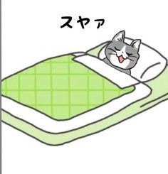 Neko, Cats, Funny, Animals, Gatos, Animales, Animaux, Funny Parenting, Animal
