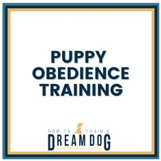 Puppy obedience training tips from the How to Train a Dream Dog blog that is full of puppy training tips you can use with any puppy or older dog. No matter if it's dog barking, peeing in the house, jumping on people, and many more, our training tips will help you started training your puppy. #puppyobedience #puppytraining