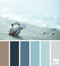 Problem deciding what colors to paint your room/house? This website posts pictures and if the pic is attractive to you - also gives you the colors within the pic. Brilliant design tool.: