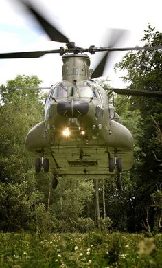 A Mk 3 Chinook from RAF Odiham practices landing in a confined area.