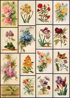 Vintage Floral Prints | Digital Collage Sheet of Vintage Floral Prints for Decoupage ...