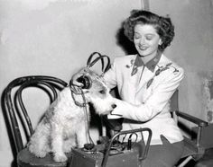 Asta listens to some music while Myrna Loy assists.