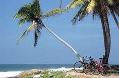 Sounds & looks amazing -   Sri Lanka.