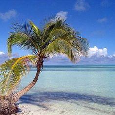 Cayo Santa Maria, Cuba 20 takes off #airbnb #airbnbcoupon #cuba