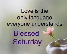 Saturday Greetings, Happy Saturday, Good Morning Images, Wise Quotes, Mornings, Blessed, Night, Gud Morning Images, Acre
