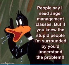 stupid people funny quotes quote lol funny quotes looney tunes funny sayings daffy duck. *They used to say that about me too. LOL