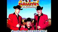 A La Edad de 14 Años - Los Gallitos de Chihuahua