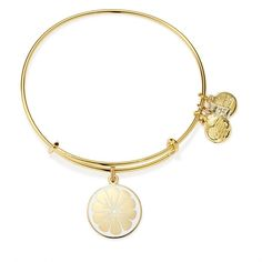 Zest For Life Charm Bangle | Alex's Lemonade Stand Energetic • Bright • Confident ALEX AND ANI will donate 20% of the purchase price* from each Zest for Life Charm sold, with a minimum donation of $25,000, between June 2015 and December 2016, to Alex's Lemonade Stand to increase awareness of childhood cancer and to help fund pediatric cancer research.