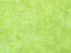Andover Fabrics - Gail Kessler 'Dimples' Bildgröße 20 cm x 15 cm dim-029-04-VL https://planet-patchwork.de/de/article/qp/29145/1/