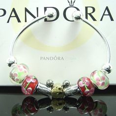 Pandora love my braclets....bracelet no 3 almost filled.....the earrings are a must also!!