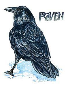 Raven - giclees at the Kenspeckle Letterpress