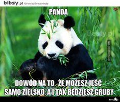 PSHINY DIY Diamond Painting cross stitch Pandas Pictures Full Mosaic round rhinestone Diamond embroidery animals home decor True Memes, Funny Memes, Hilarious, Chengdu, Panda Tour, Animal Facts, Cute Panda, Cross Paintings, Wall Art Prints