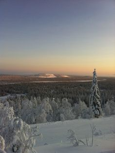 Luosto ski resort in Lapland.  Saariselkä activities http://www.saariselka.com/individual/activities