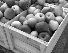 • Hand Selected Fuji Apples •