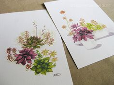 wow! I love succulents and these watercolors are just so delicate with amazing colors. I have an amazing glitter watercolor paint must go experiment!
