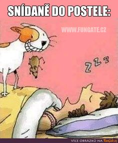 Disney Characters, Fictional Characters, Snoopy, Humor, Funny, Breakfast In Bed, Funny Pics, Jokes, Humour