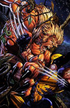 Sabertooth vs Wolverine.     One of my favorite X-men story lines !