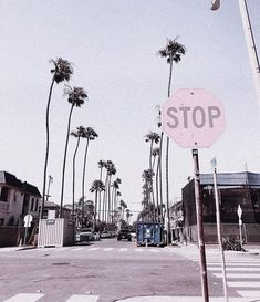 tatianasoash Pretty sure pink stop signs would be really inefficient and maybe even a little dangerous but boy would they be cute beach aesthetic edit pink edit pink aesthetic filler photos palm tree aesthetic palm tree edit palm tree filler photo Aesthetic Pastel Wallpaper, Aesthetic Backgrounds, Aesthetic Wallpapers, Bedroom Wall Collage, Photo Wall Collage, Fotografia Vsco, Photowall Ideas, Vsco Pictures, Collage Pictures