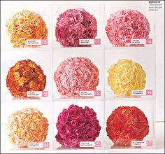 Carnations! The most underrated flower.