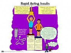 Nursing Mnemonics and Tips: Rapid Acting Insulin Nursing School Notes, Nursing Career, Nursing Tips, Ob Nursing, Study Nursing, Nursing Classes, College Nursing, Cardiac Nursing, Surgical Nursing