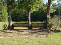 cross country jumps, Greg Schlappi Cross Country Jumps Landrum, SC Permanent Jumps
