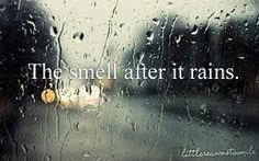 """The smell after it rains."" reminds me of summertime as a kid"