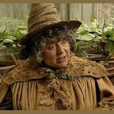 Miriam Margolyes as Pomona Sprout in Harry Potter and the Chamber of Secrets. Harry Potter Cosplay, Harry Potter Books, Harry Potter Characters, Hogwarts Professors, Ron And Hermione, Yer A Wizard Harry, Lord Voldemort, Albus Dumbledore, Sprouts