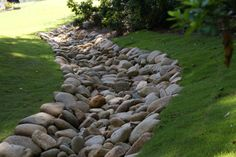 Advice, techniques, and overview with regards to receiving the greatest end result as well as ensuring the maximum utilization of Acreage Landscaping Ideas Dry Riverbed Landscaping, Acreage Landscaping, Small Backyard Landscaping, Landscaping Ideas, Backyard Stream, Rock Drainage, Backyard Drainage, Drainage Ditch, Inexpensive Backyard Ideas
