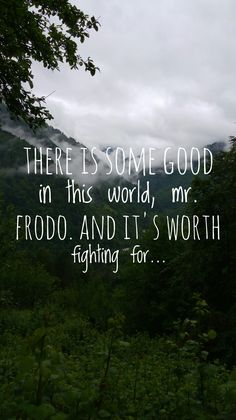 There is some good in this world mr. Frodo. And it's worth fighting for! LOTR quotes