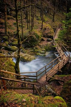 Wood Bridge, The Alps, Austria