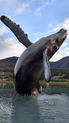 Breaching Humpback Whale Statue in Juneau Alaska. Whale Art, Sea Whale, Whale Sharks, Underwater Animals, Juneau Alaska, Wale, Ocean Creatures, Sea Fishing, Humpback Whale