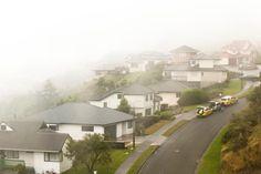 Fog in Wellington suburb