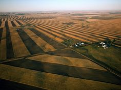 Monoculture wheat fields in Montana (NatGeo) Farm Blinds, Agriculture Pictures, Side By Side Accessories, Soil Conservation, Homestead House, Last Minute Travel, Simple Pictures, Dog Hacks, Aerial Photography