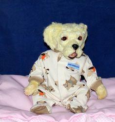 OOAK Reborn Yellow Lab Dog - Preemie size prototype - Artist PhD Collectables