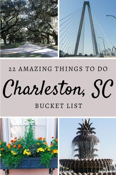 Check out this list of things to do in Charleston, South Carolina. Find out where to stay, things to do, and also tips on the best nearby beaches! South Carolina Vacation, Charleston South Carolina, Charleston Sc, Travel Usa, Travel Tips, Travel Articles, Travel Guides, East Coast Travel, Visit Usa