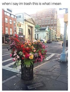 Not relevant, but how cool - Floral Designer is Turning NYC Trash Cans into Giant Vases Overflowing with Flowers Crush Memes, Disney Memes, Ver Memes, Flower Installation, Memes In Real Life, Funny Animal Memes, Funny Memes 2017, Flower Vases, Flower Bouquets