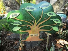 """I loved this family tree they did on HGTV's """"My Backyard goes Disney""""   Each of the leaves on this family tree lifts up and you can see each child's birthday, and """"gotcha day"""" (adoption date)"""