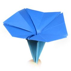 origami flower, morning glory with five petals