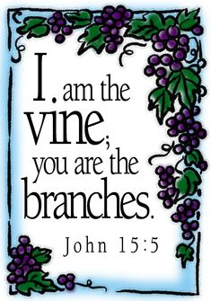 In an extended metaphor, the Lord Jesus said that He is the true Vine and Christians are the branches. Description from degatoji.keep.pl. I searched for this on bing.com/images