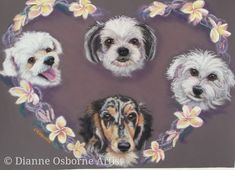 """Pet portrait in pastel """"Tia, Bella, Pippa & Audree with Frangipani Heart"""" Commissioned as surprise gift.  If you would like a portrait of your fur babies it is as easy as sending me photos of your pet &  size of painting you want.   Then I will send you a quote."""