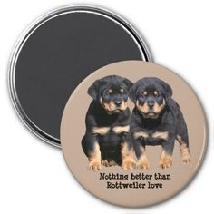 He is medium in size and his coat is black with rust to mahogany markings. This will make a great gift for you or any Rottweiler lover you know.  #rottweiler, rottweilers, rottie, rotties, working, working dog, #dog, dogs, #puppy, puppies, pups, pup, #pets, animals, thank you, thankyou, thanks, #birthday