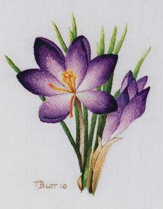 Kết quả hình ảnh cho Colour Confidence in Embroidery - Trish Burr