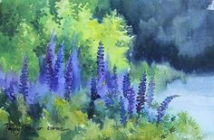 I went out the paint the lupins...