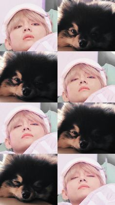 Taehyung y Yeontan ♡ Foto Bts, Bts Dogs, Baby Animals, Cute Animals, Bts Memes Hilarious, V Taehyung, Bts Lockscreen, Bts Group, Bts Pictures